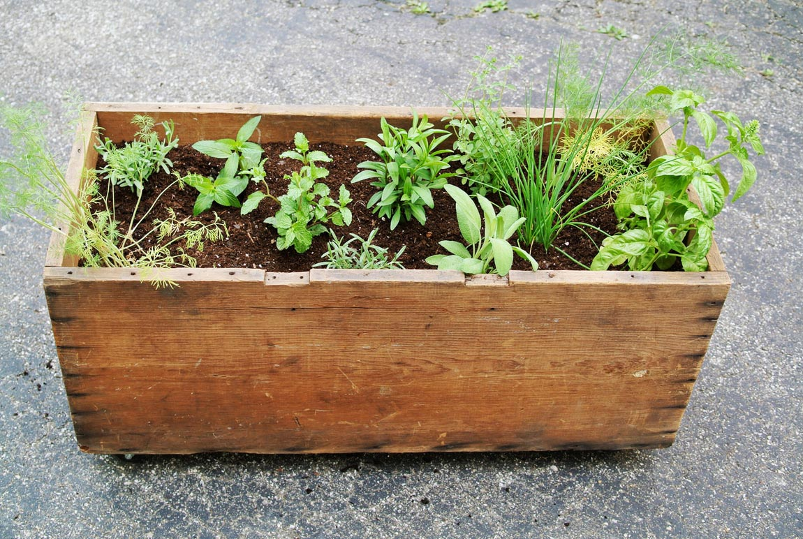 Herb Garden Planter Box Ideas