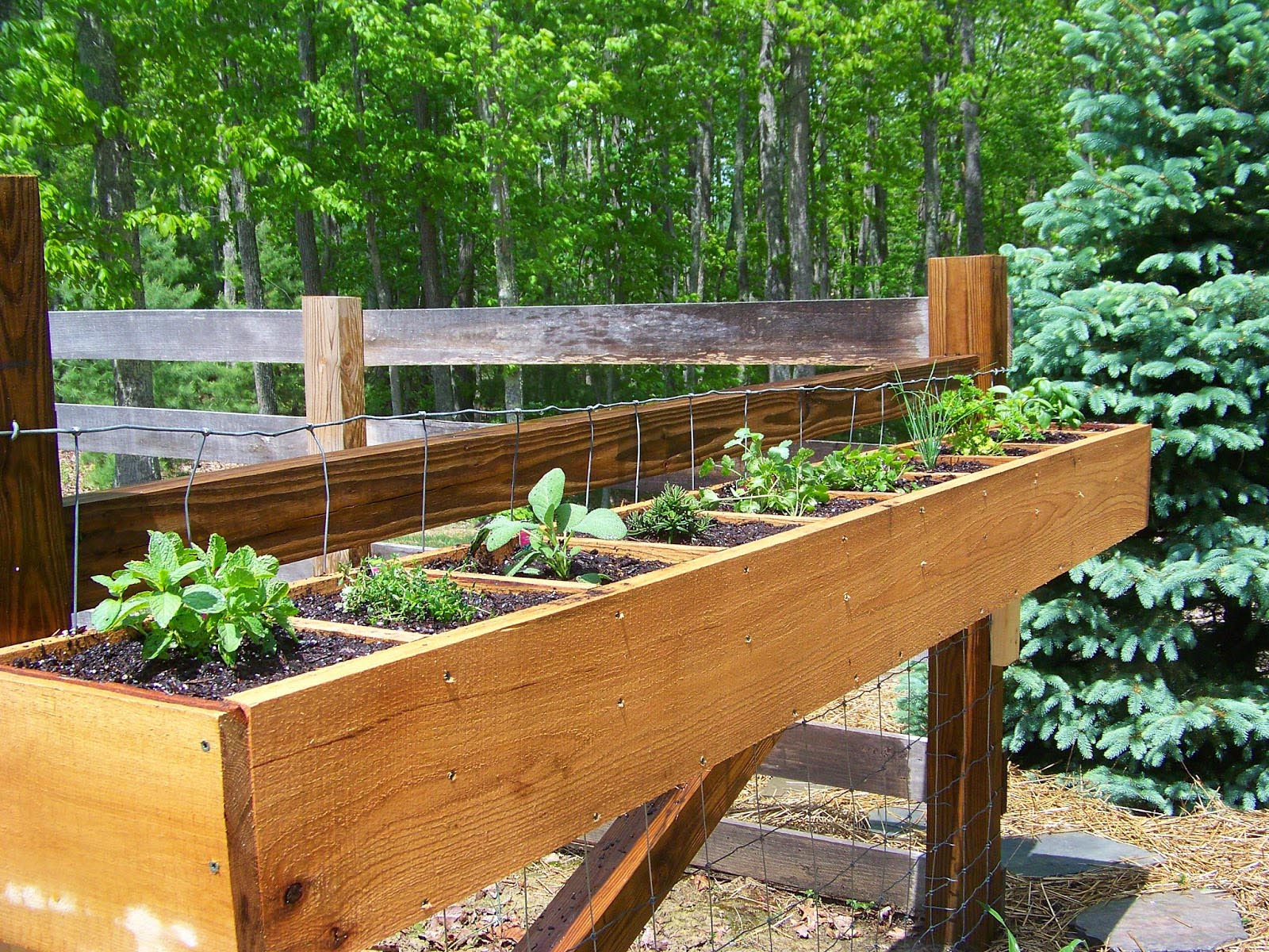 Herb garden planter ideas garden design ideas for Outdoor planter ideas