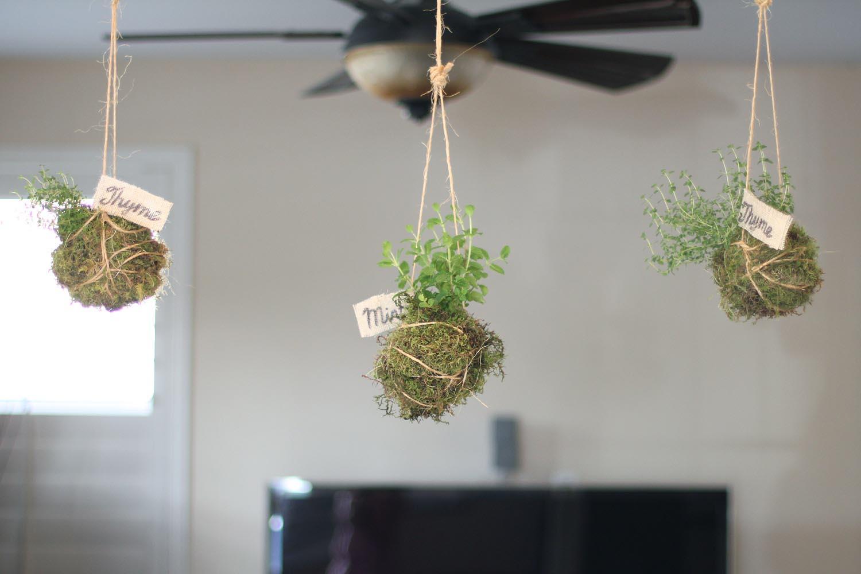Herb Garden Pots Indoors