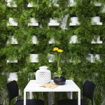Herb Garden Wall Indoor