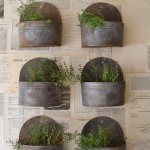Herb Garden Wall Planter