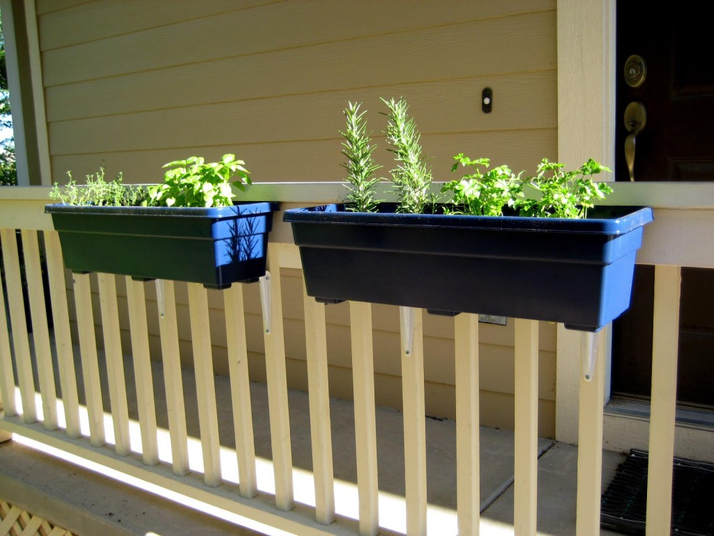 Herb Garden Window Box Kit
