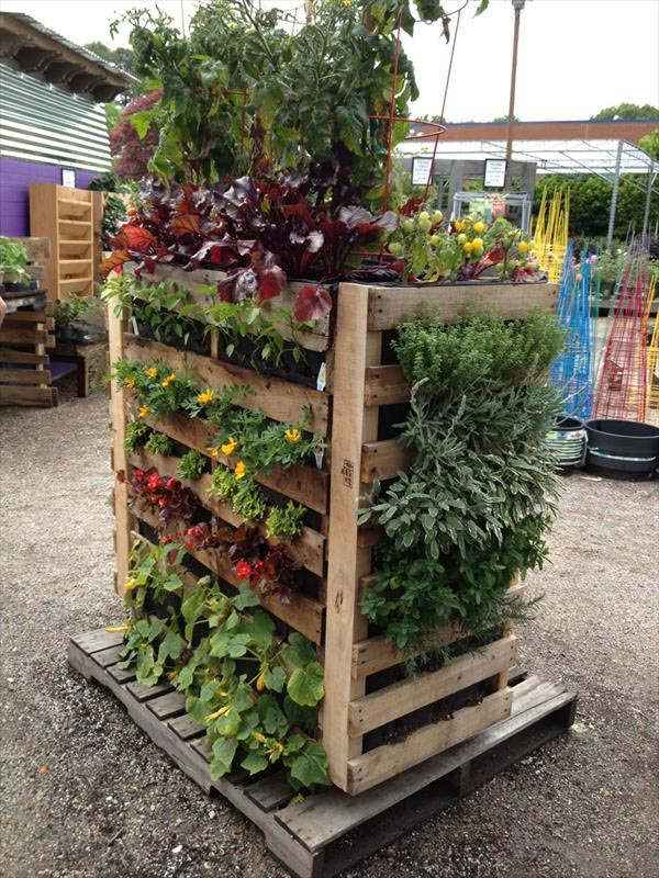 Herb Garden with Pallets