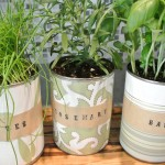 Homemade Indoor Herb Garden