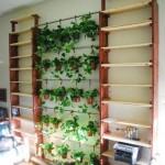 Indoor Herb Garden on Wall