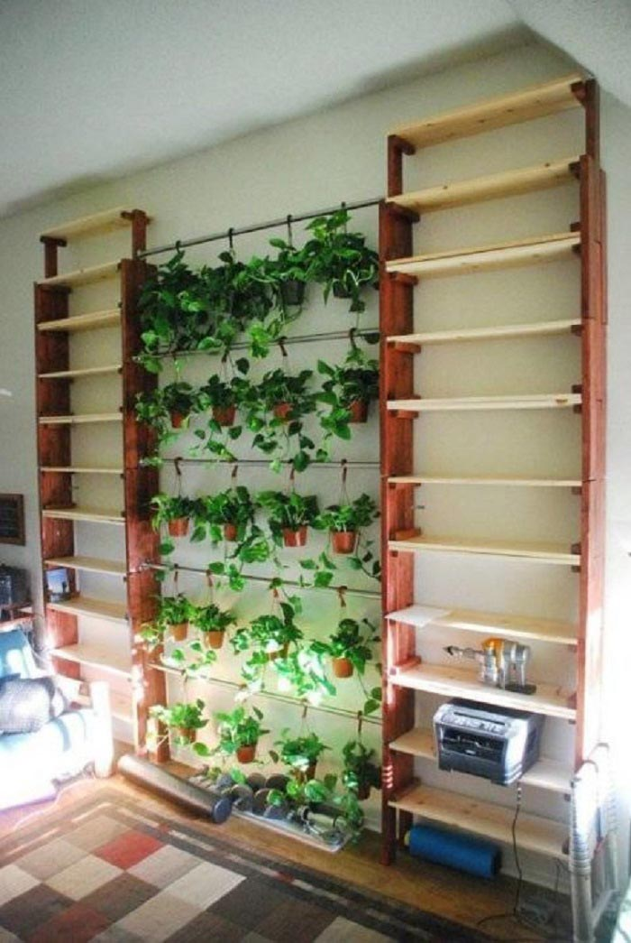 Indoor Herb Garden on Wall