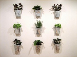 Indoor Herb Garden Wall Planter