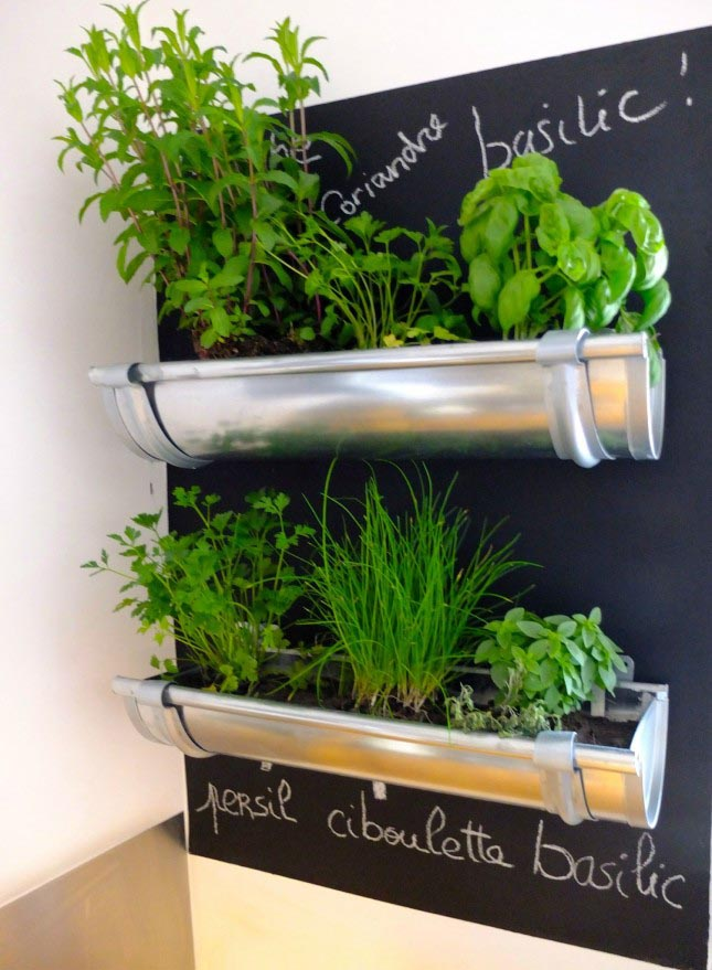Indoor Herb Garden Wall