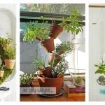 Indoor Kitchen Herb Garden Ideas