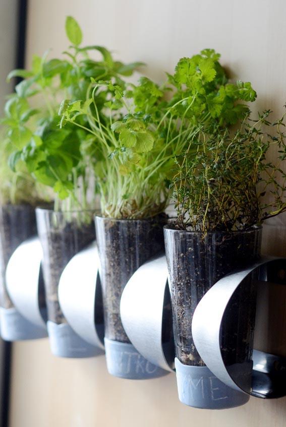 Indoor Kitchen Wall Herb Garden