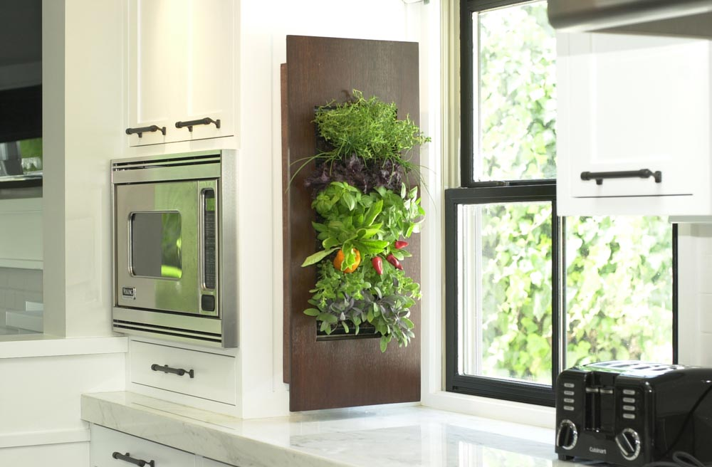 Indoor Kitchen Wall Herb Garden