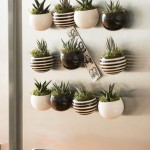 Indoor Succulent Garden Lighting