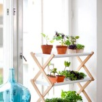 Indoor Window Box Herb Garden