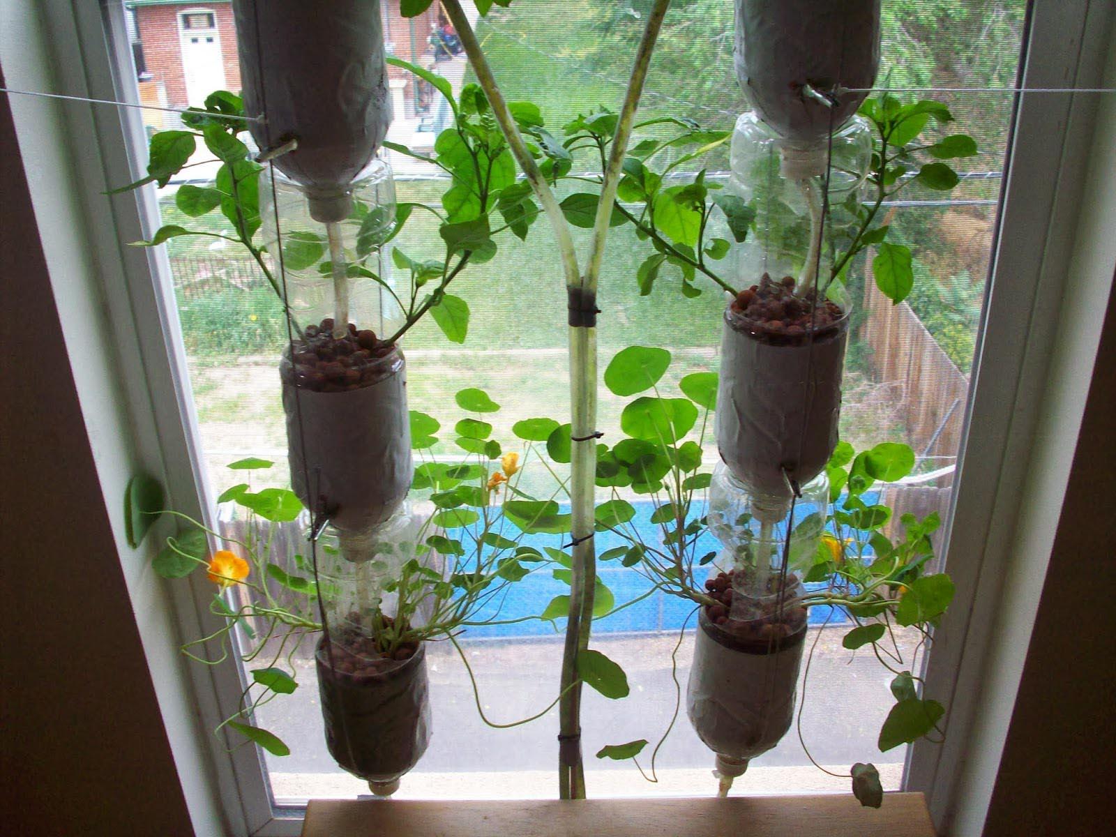 Indoor Window Herb Garden Ideas