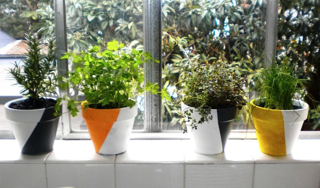 Indoor Window Herb Garden Kit Garden Design Ideas