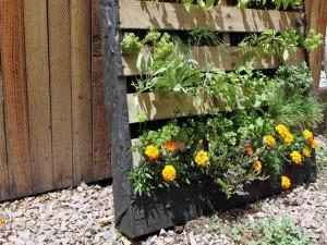 Interactive Herb Garden Planner