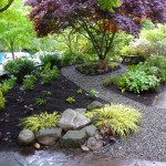 Japanese Shade Garden Plants