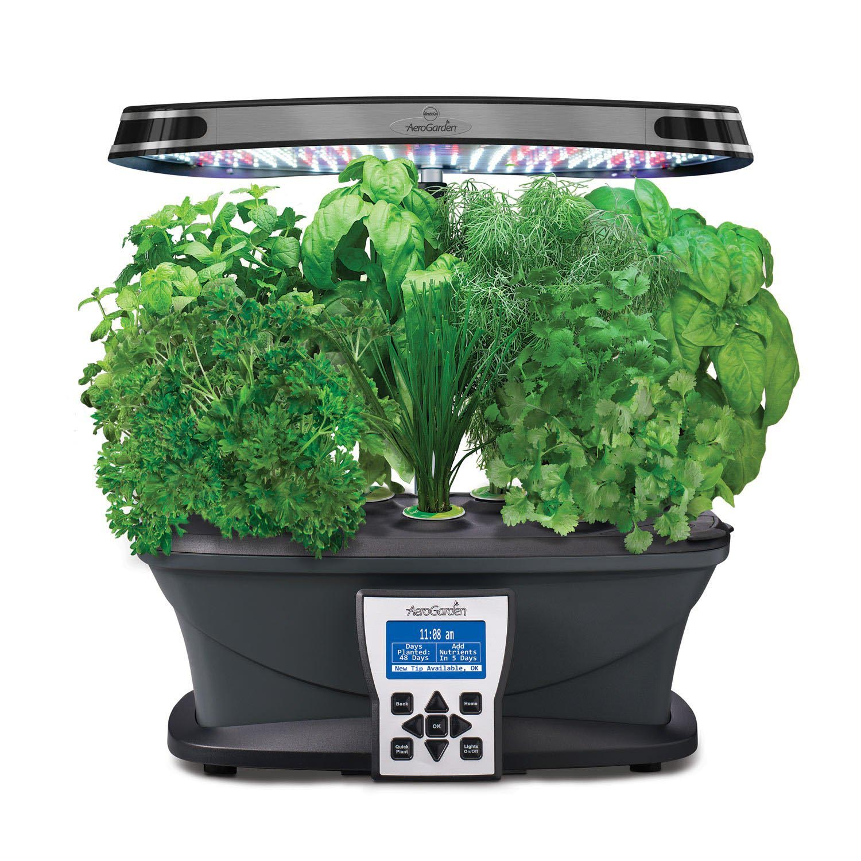 Kitchen Hydroponic Herb Garden