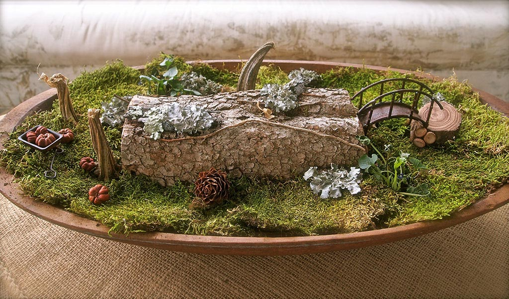 Large Fairy Garden Containers