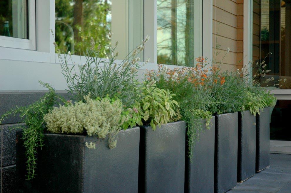 Large Herb Garden Planter