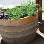 Large Wooden Barrel Planters