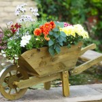 Large Wooden Wheelbarrow Planter
