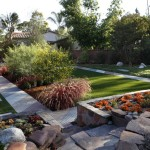Low Maintenance Backyard Plants