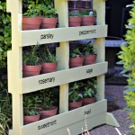 Make a Herb Garden from Pallets