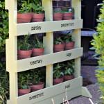 Make a Herb Garden from Pallets