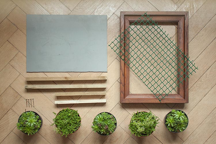Make a Vertical Succulent Garden