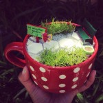Make Indoor Fairy Garden
