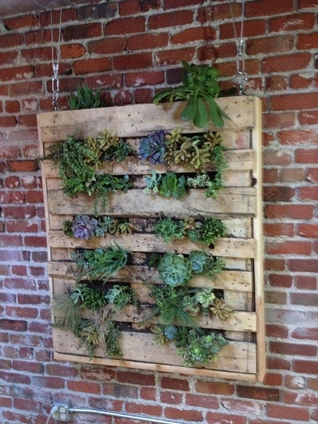 Making a Herb Garden out of a Pallet
