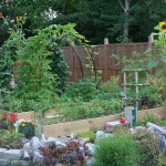 Midwest Vegetable Garden Plans