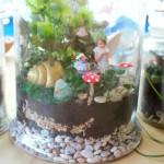 Mini Fairy Garden Terrarium