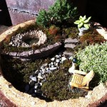 Miniature Fairy Garden Containers