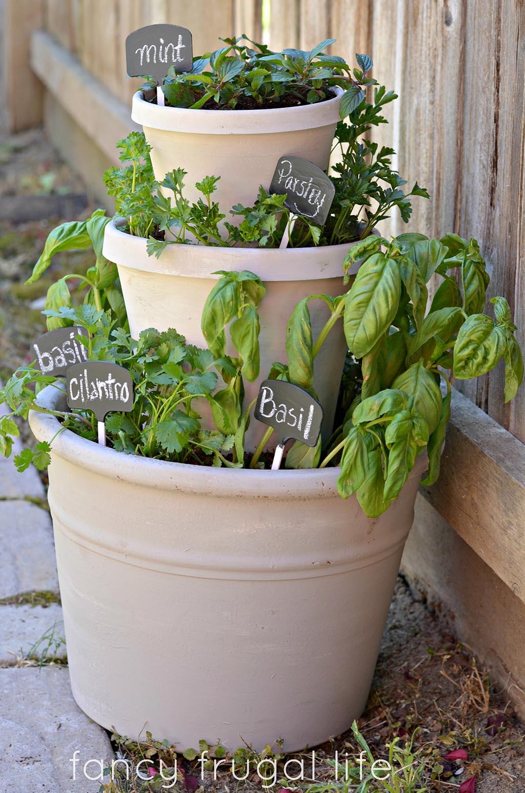 One Pot Outdoor Herb Garden