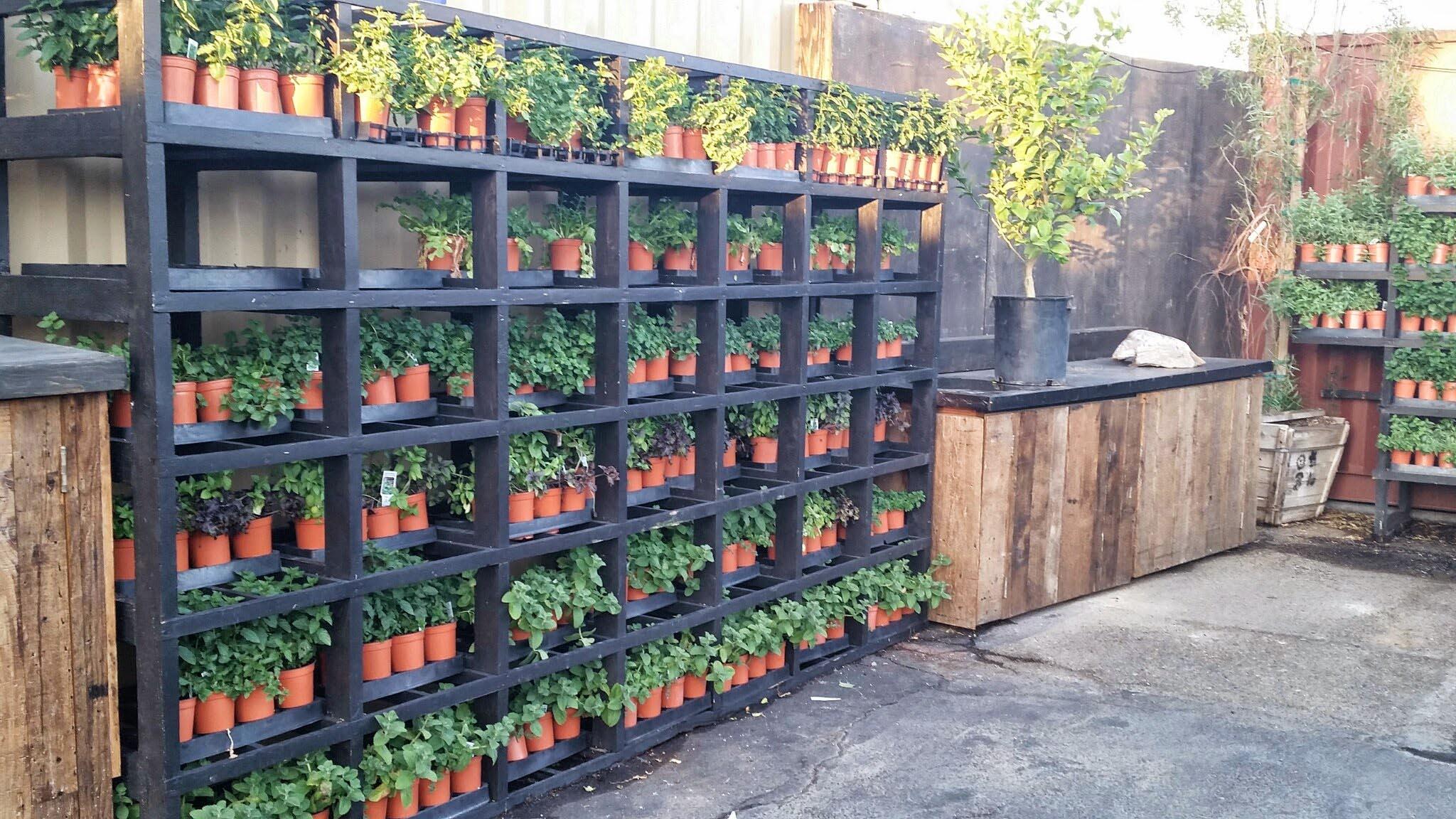 Outdoor Herb Garden Design