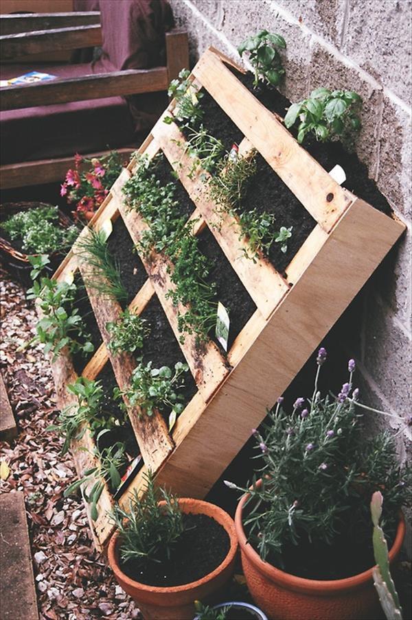 Pallet Planter Herb Garden