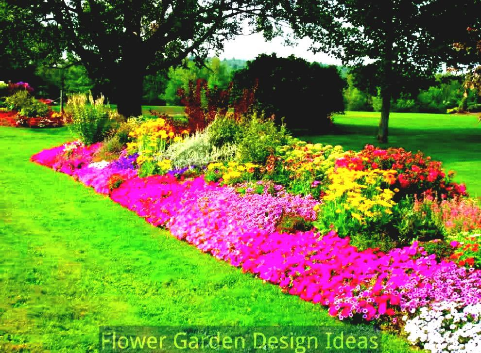 Planning a Flower Garden for Beginners