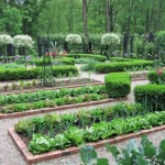 Planning a Fruit and Vegetable Garden