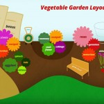 Planning a Vegetable Garden Layout Free