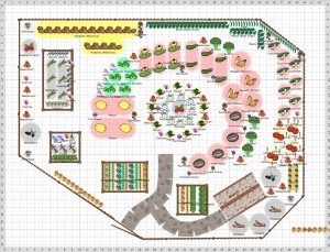 Planning a Vegetable Garden Plot