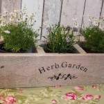 Planter Boxes for Herb Gardens