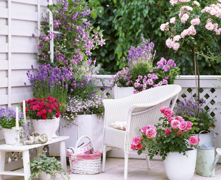 Planting a Patio Herb Garden