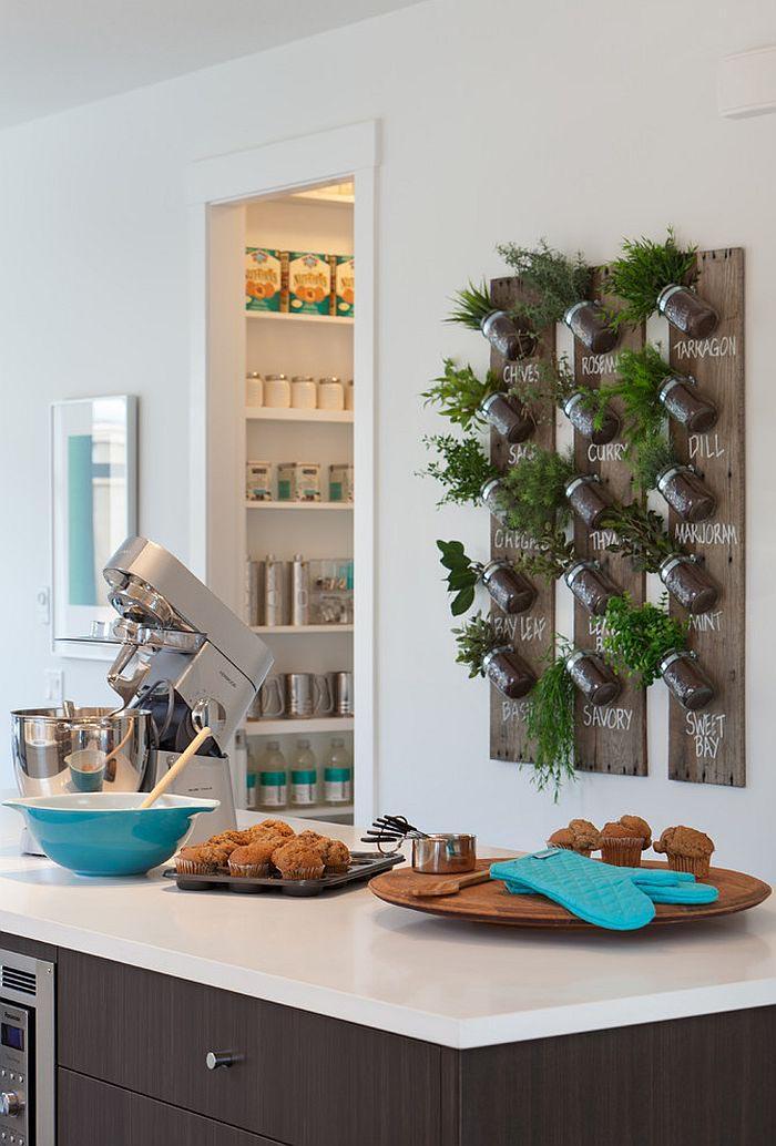Planting Herb Garden Indoors