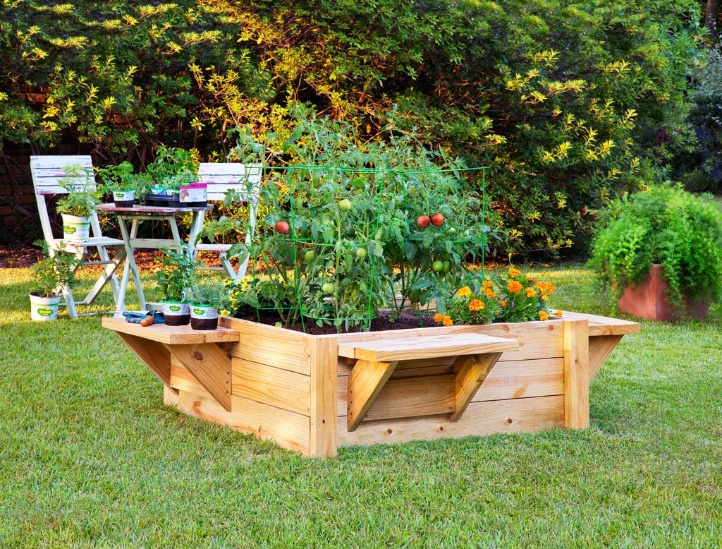 Planting Herbs in Raised Garden Beds