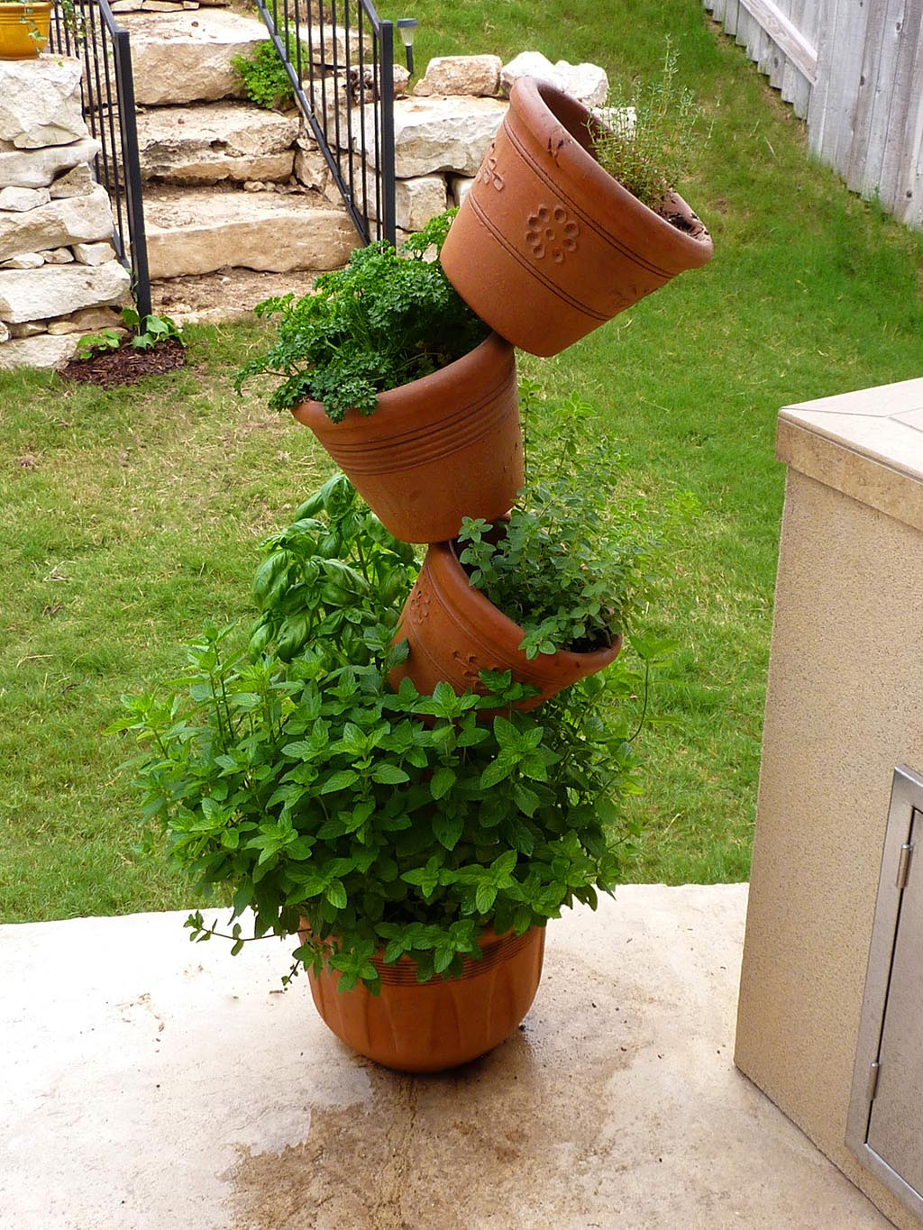 Planting herbs outdoor garden garden design ideas for Plants for outdoor garden