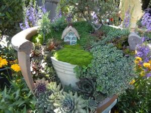 Plants for a Fairy Garden