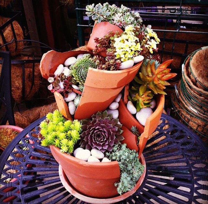 Pot Plant Fairy Garden