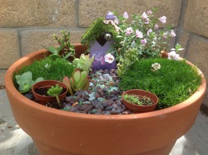 Pots for Fairy Gardens